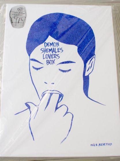 demon-shemales-lovers-box-nils-bertho-artiste-underground-montpellier-france-galerie-le-mat